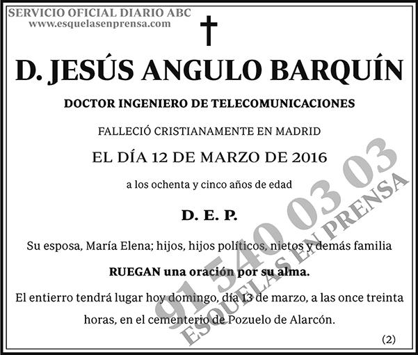 Jesús Angulo Barquín
